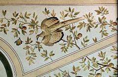 Ausschnitt, exotischer Vogel, Aufn. Cürlis, Otto, 1943/1945