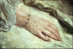 Ausschnitt: zwei sitzende Damen, Detail: rechte Hand der linken Dame, Aufn. Cürlis, Peter, 1943