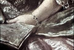 Ausschnitt: liegende Dame, Detail: linker Arm mit Notenschrift, Aufn. Cürlis, Peter, 1943