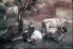 Ausschnitt: Viehherde, Aufn. Cürlis, Peter, 1943/1945